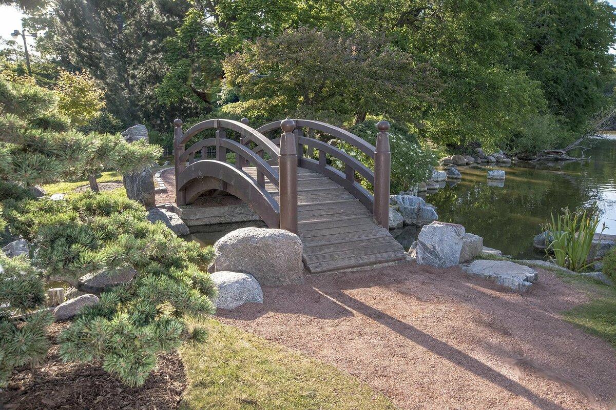 дня два картинки мостика садового участка несколько