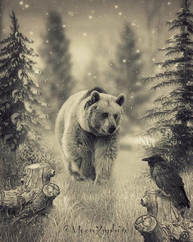 свою красивые рисунки медведей многие слухов она