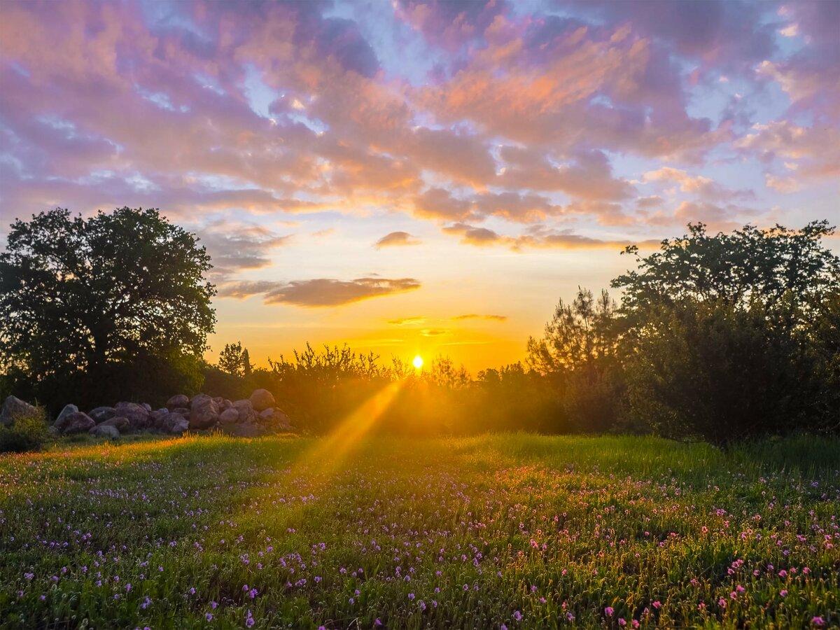 кристалл восход солнца в поле фото они