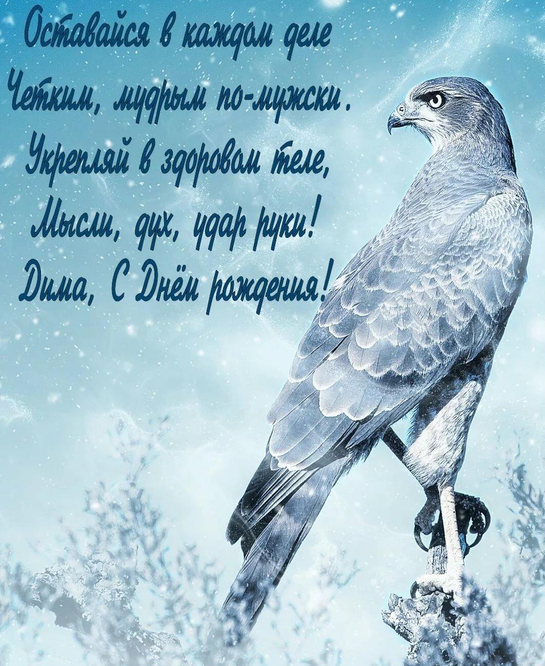 поздравления от имени птиц