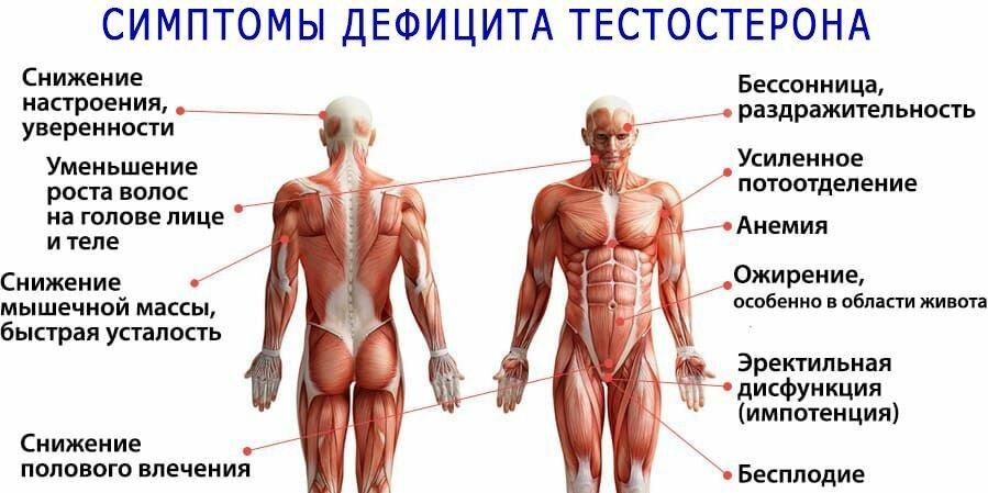 Картинки для поднятия тестостерона у мужчин