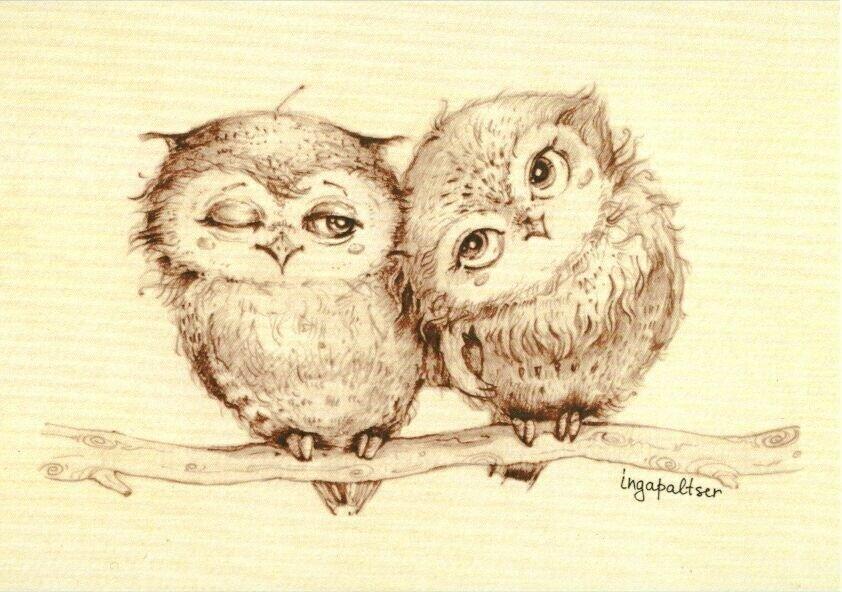 милые совушки рисунки карандашом