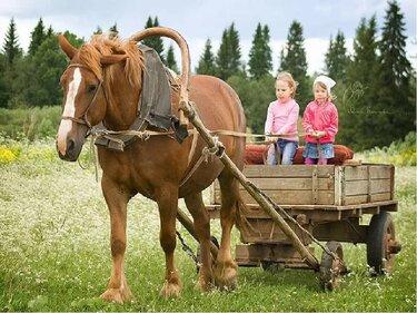 лошадь запряженная в телегу