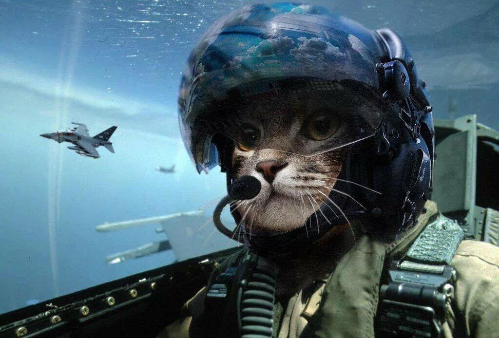 Картинки смешные летчики