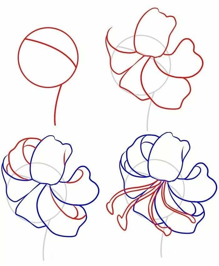 Рисунки для начинающих цветы