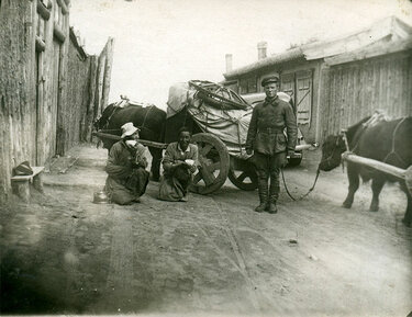 монгольские лошади красная армия