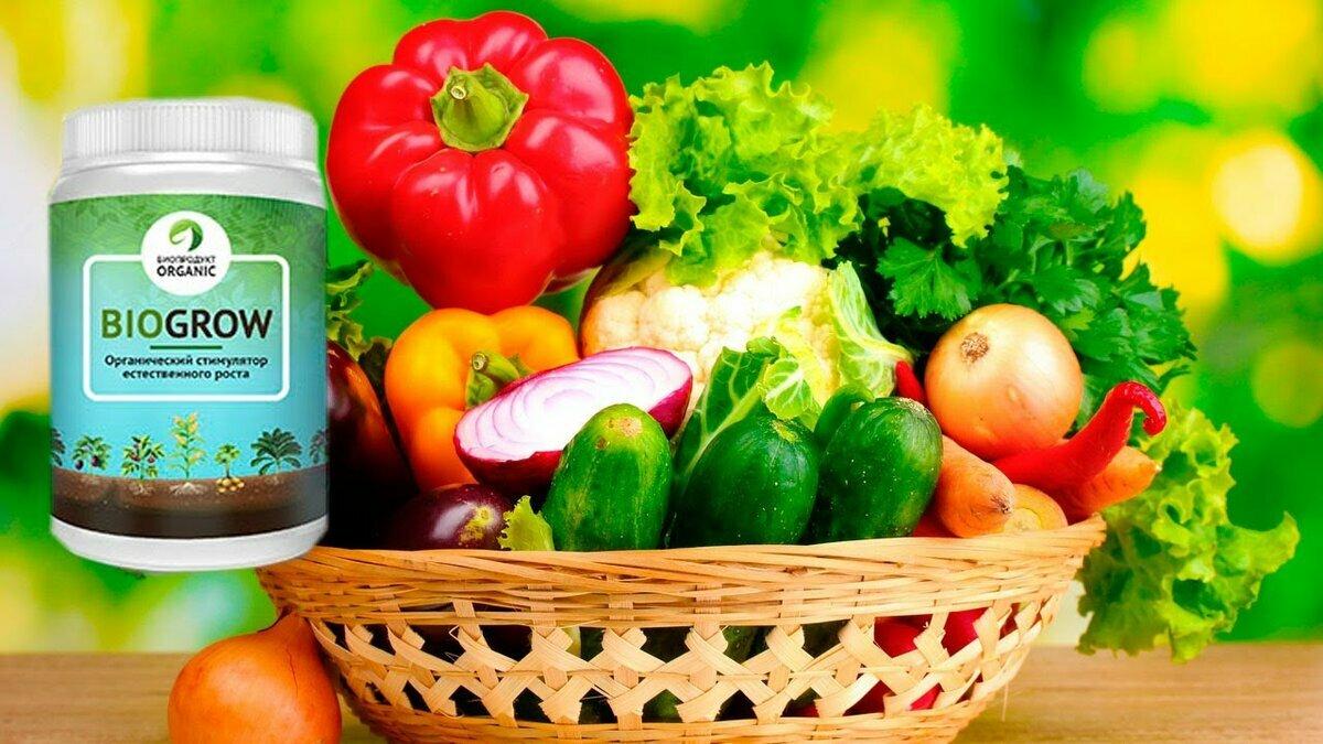 BioGrow Plus – биоактиватор роста растений и рассады