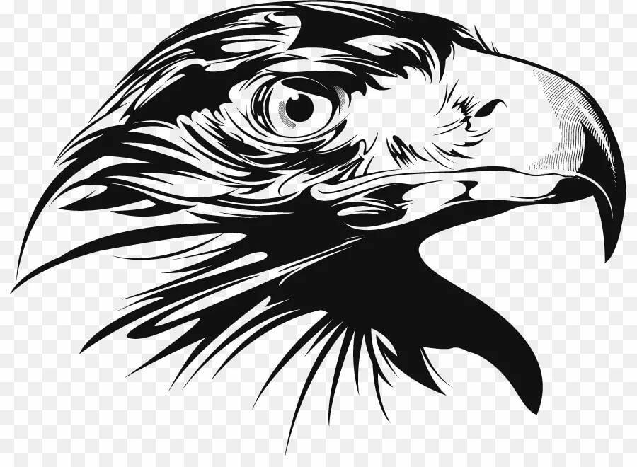 Картинка орел вектор