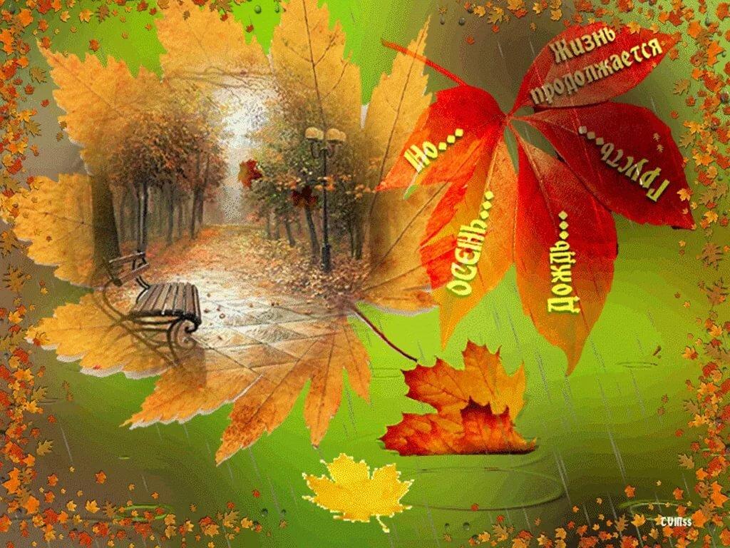 Картинки осень в сентябре с анимацией