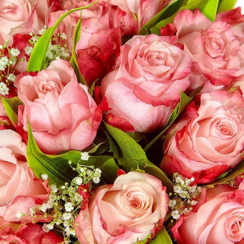 Прекрасные цветы открытка