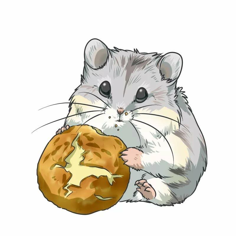 картинки рисунки хомячок с печенькой говорит