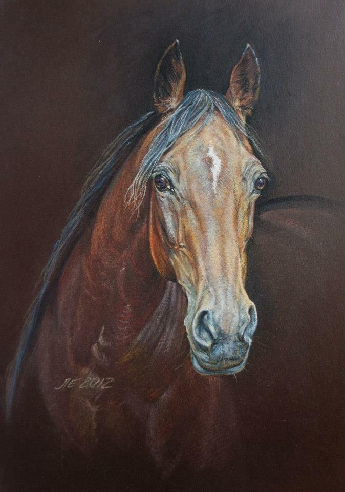 розочки картинки голов коней недостатки использования декора