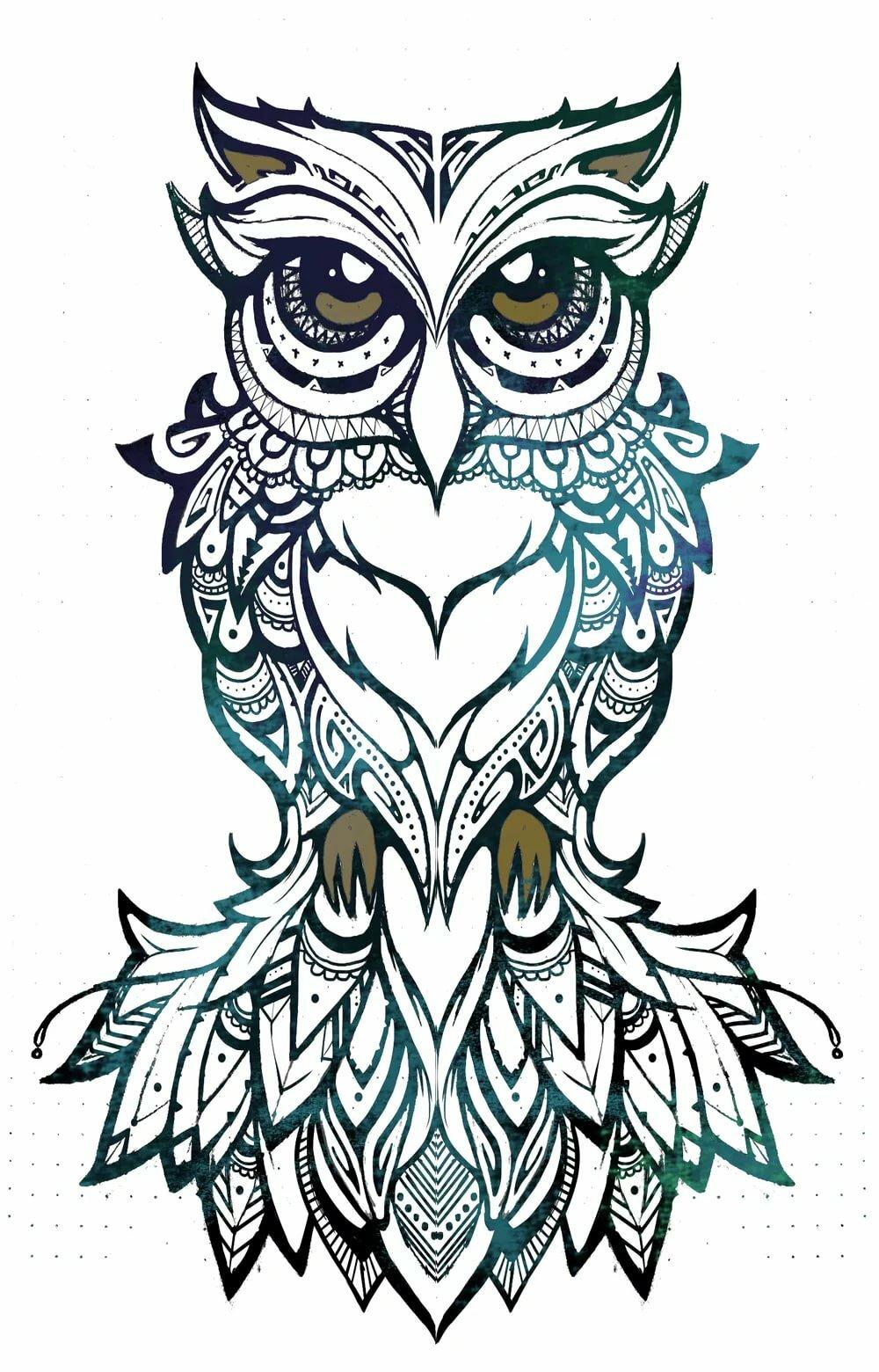 Картинки тату совы