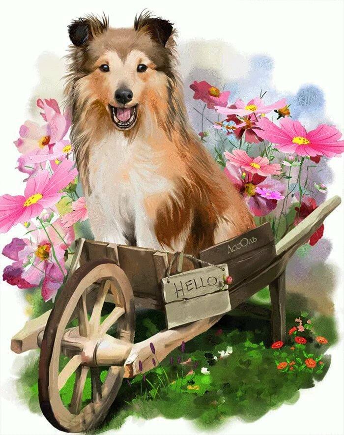 Картинки собаками анимашки