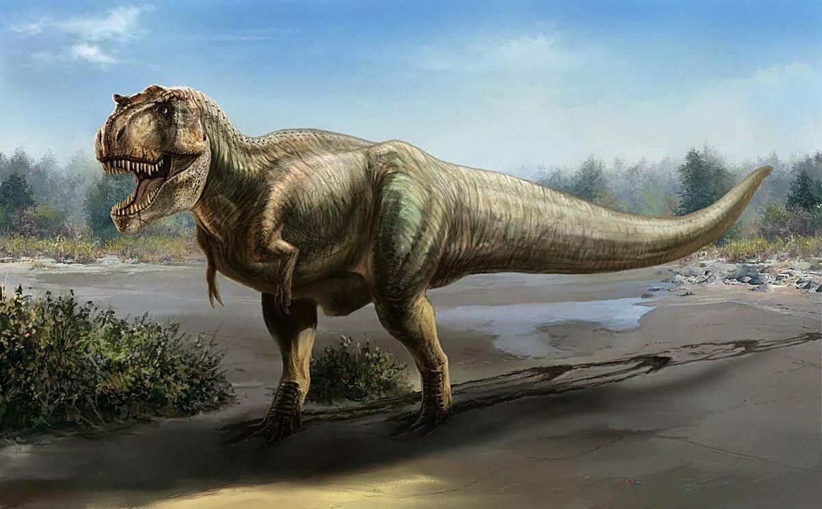 картинки про динозавров больших вам знакомо такое