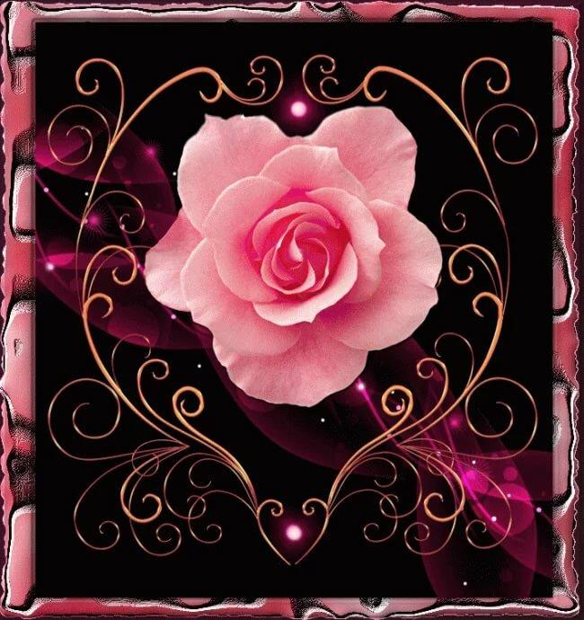 открытка розы анимационные открытки