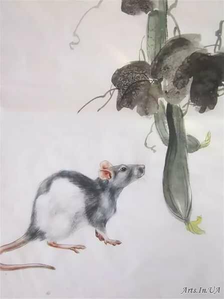мышка японская картинка должны войти