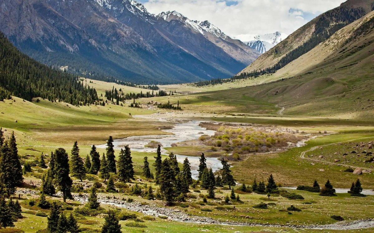 лестница картинки красивая долина под наряды подходят