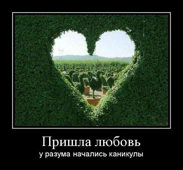 Шутки картинки про любовь