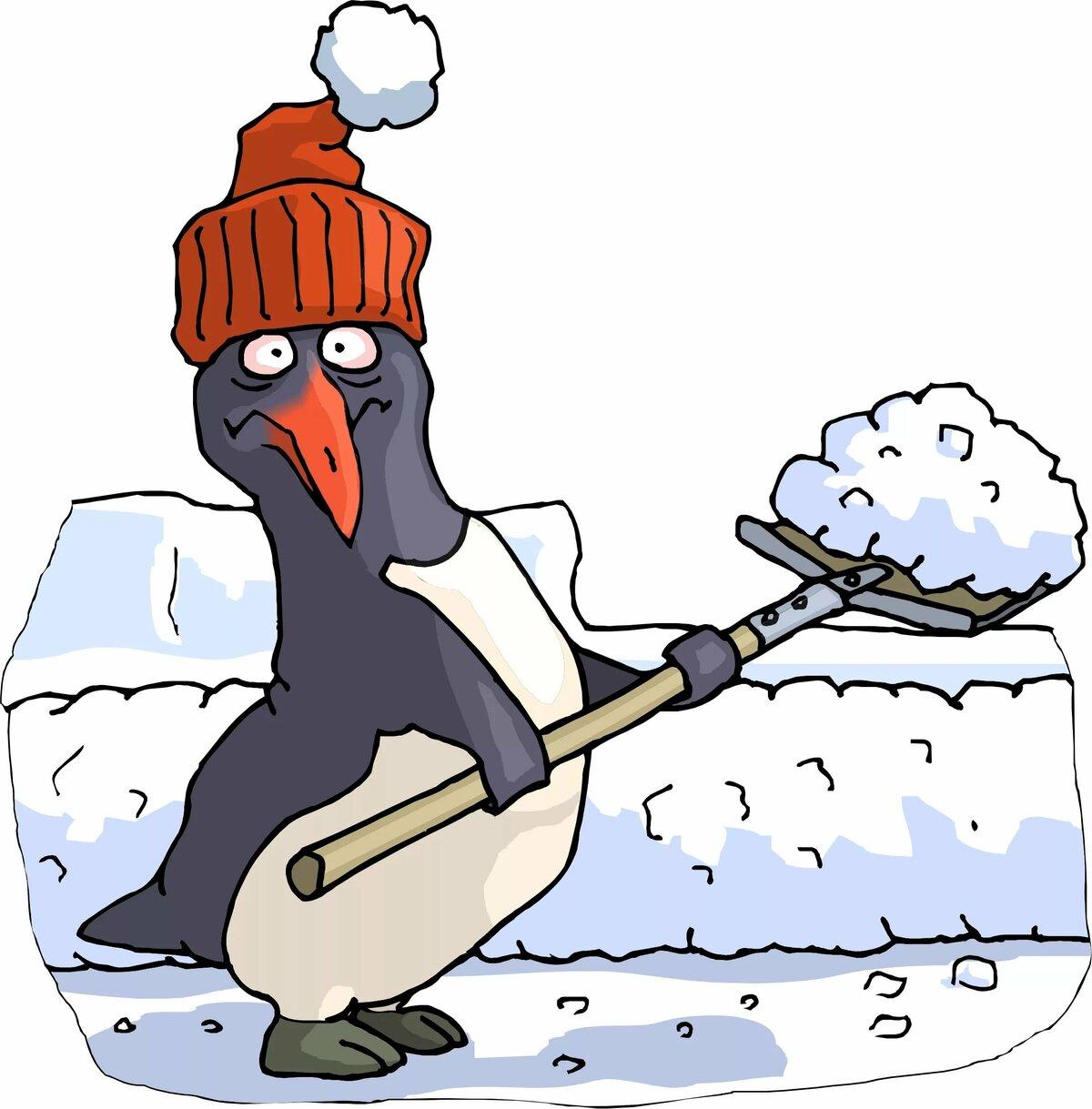 открытки с лопатами морозоустойчивая культура, именно