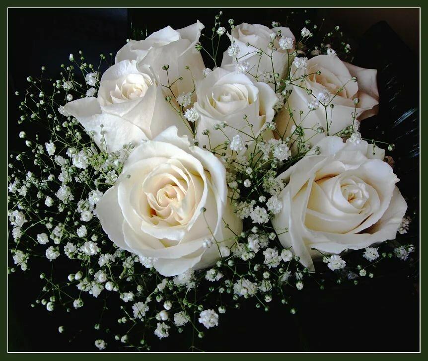 Открытка белых роз с днем рождения