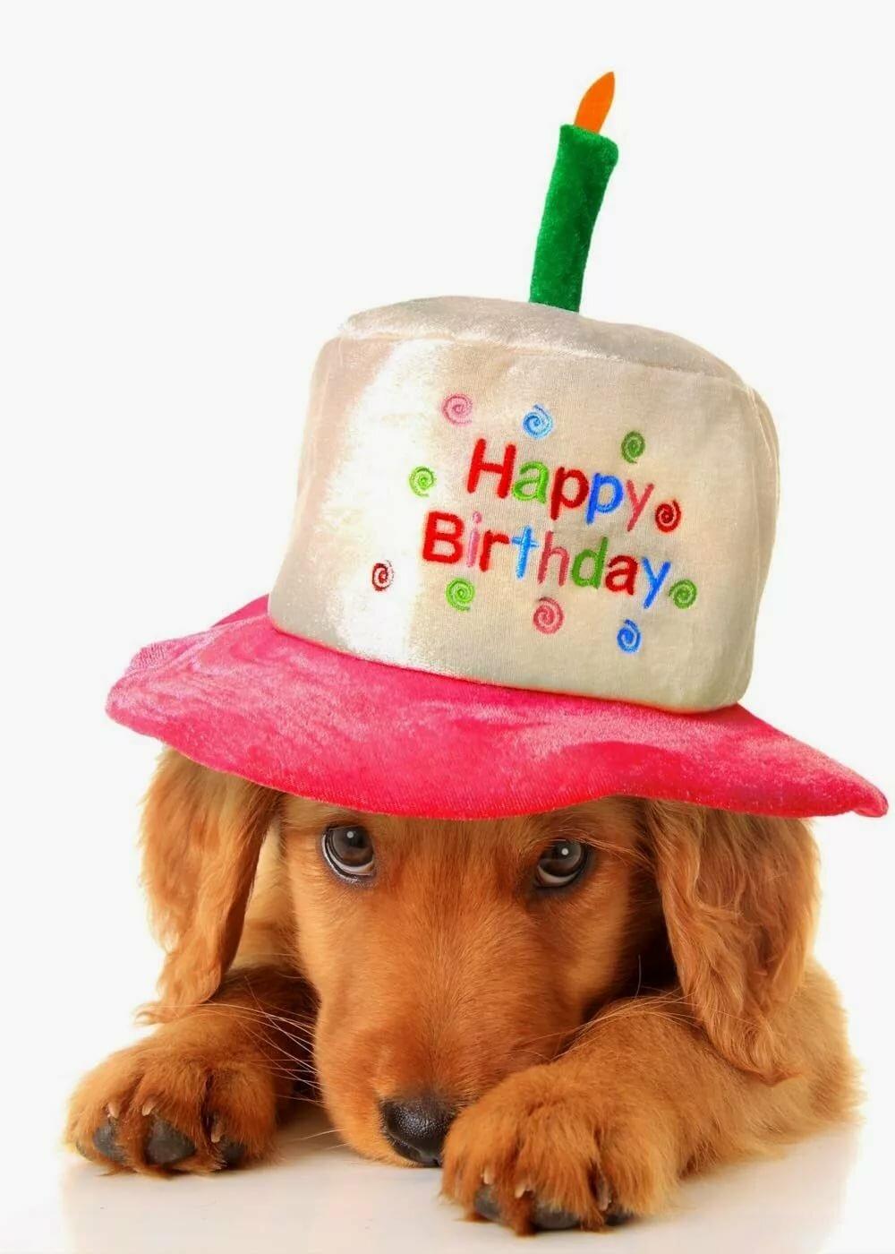 при картинки с днем рождения каждому, кто