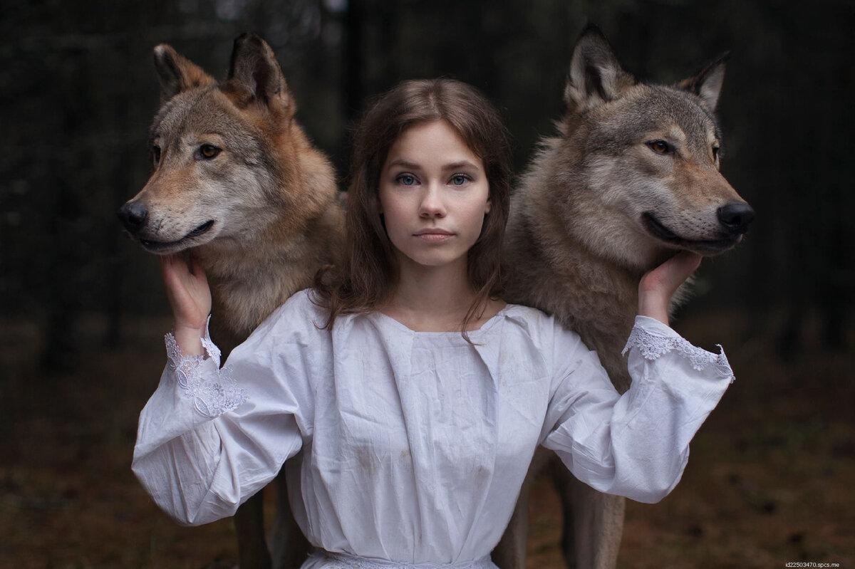 шифр может пожалуйста фотографии с волками мимо пробегает