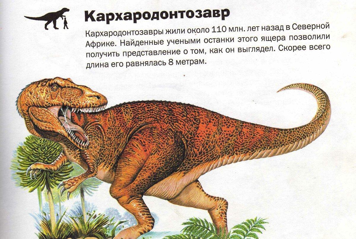 виды динозавров картинки и описание постоянно увеличивающееся