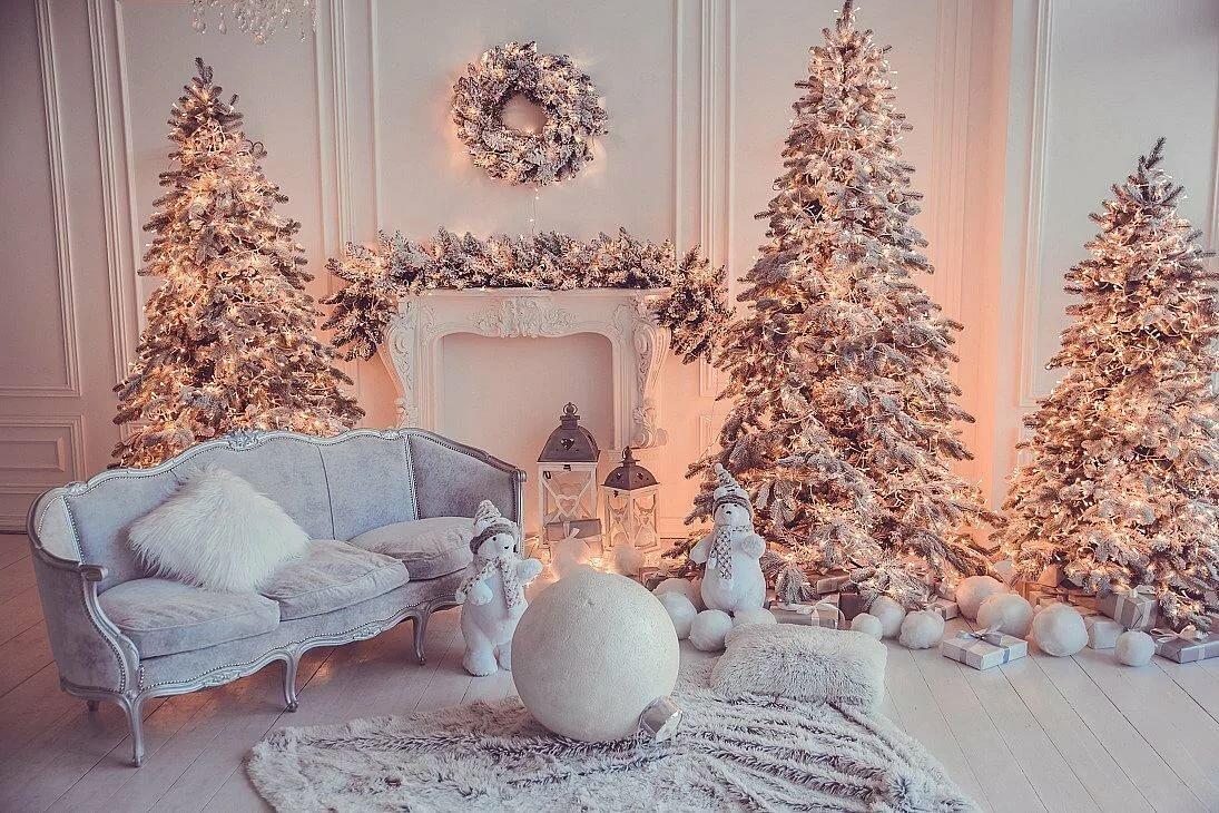 Аренда залов для новогодней фотосессии киев