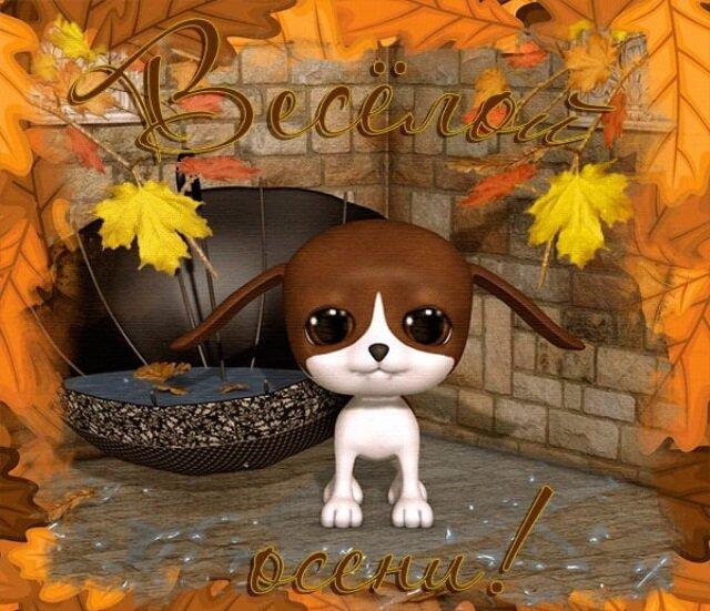 Картинки добрый, красивая осень картинки с надписями прикольные хорошее настроение