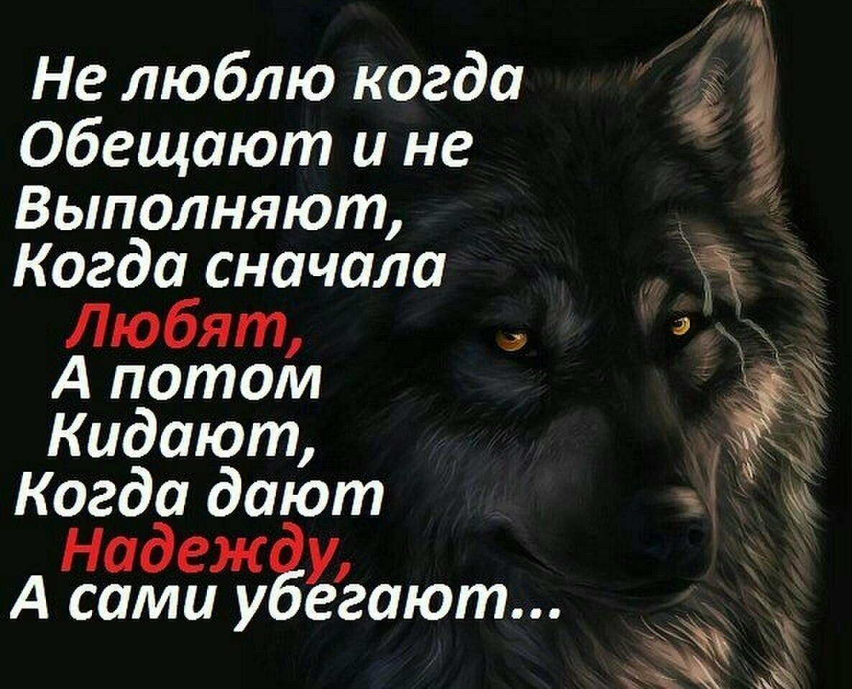 Статусы волков с картинками