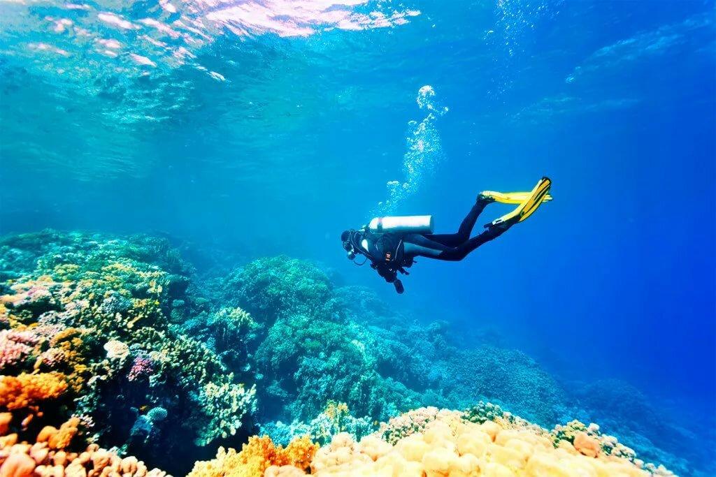 Путешествие под водой картинки