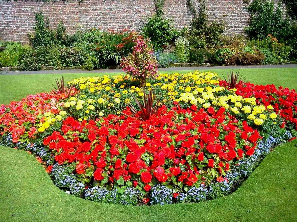 упакована как посадить цветы в саду красиво фото природе, парку или