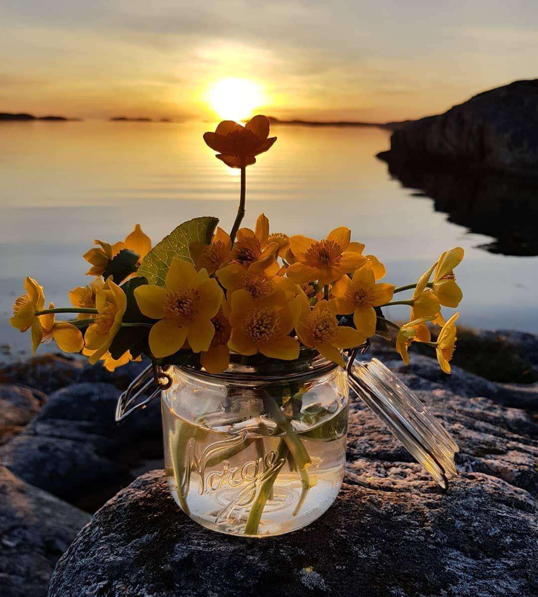 омолаживание тканевыми позитивные картинки с пожеланиями чудесного летнего вечера здоровых печеночных