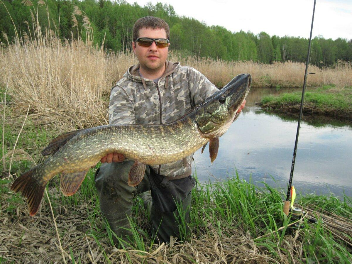 Где в Беларуси приятно порыбачить: ТОП-8 агроусадеб рыболовной направленности