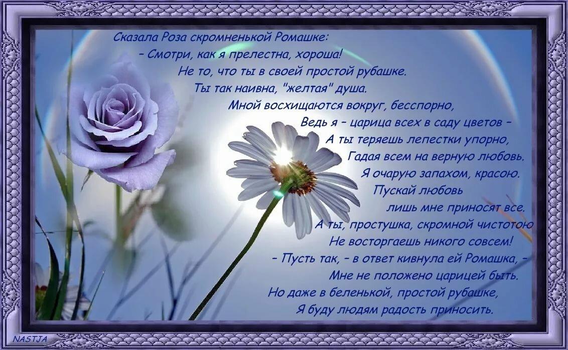 Розы стихи в картинках
