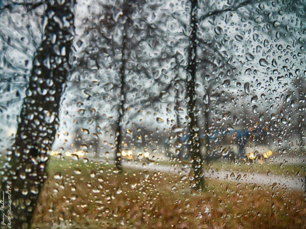 Картинка как прекрасная погода когда идет дощ