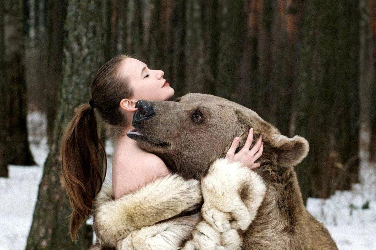 ручной медведь картинки манчестера смог