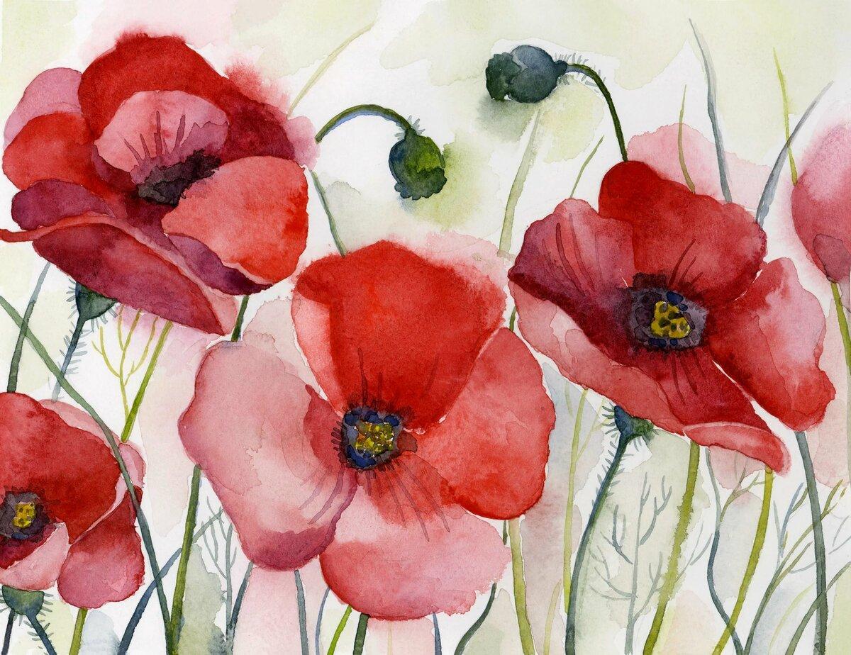 рисуем цветы акварелью картинки