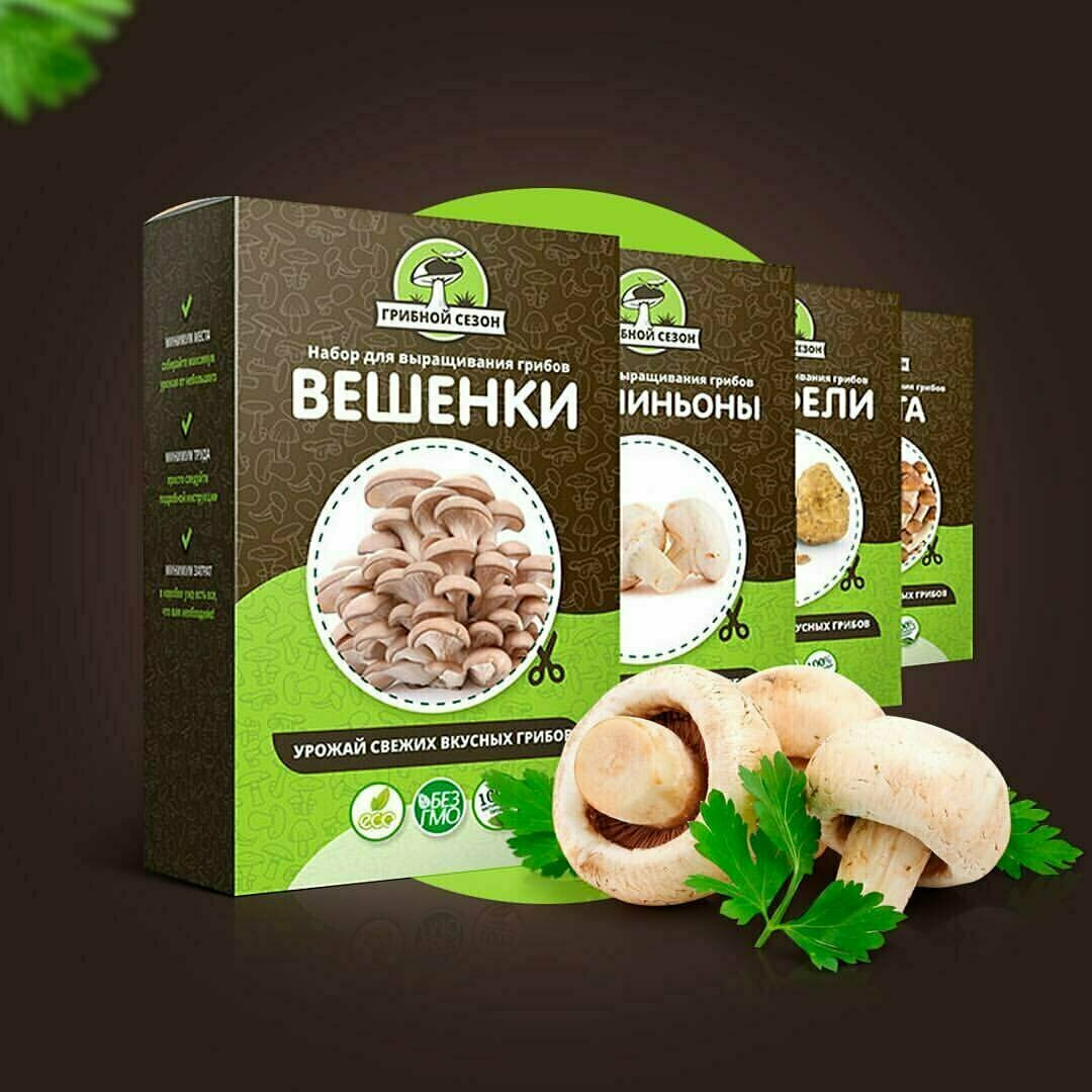 Набор для выращивания грибов Домашняя Грибница в Абакане