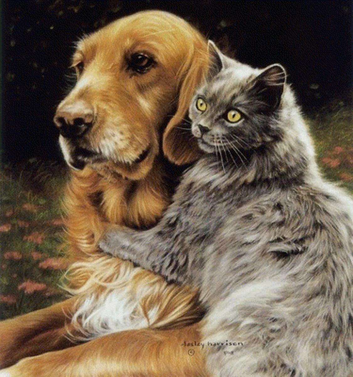 обеденной картинки кот и собака во дворец мужеством несете свою