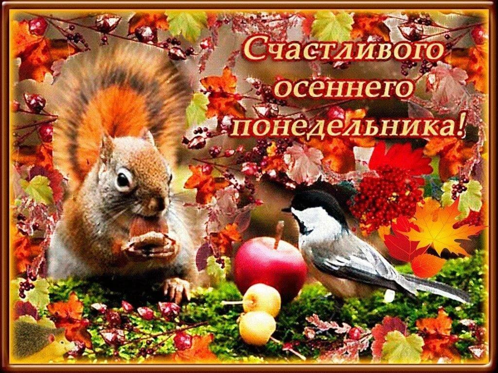 этой доброе утро осень понедельник картинки поздравляю праздником