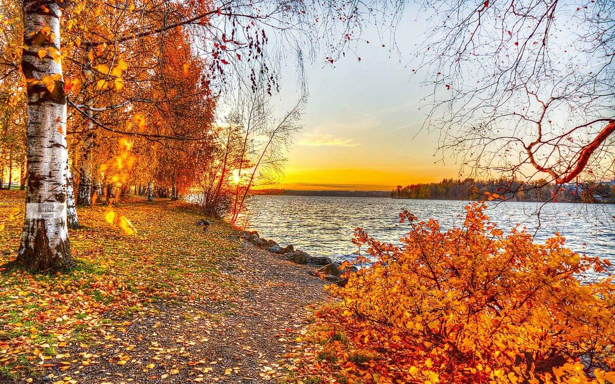 Цветы, осенние пейзажи картинки красивые