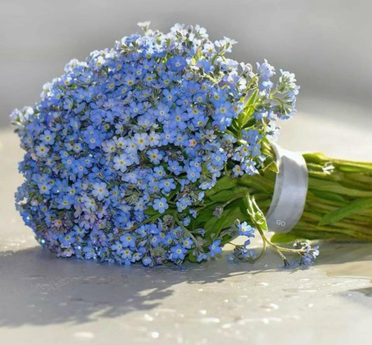 Поздравление, открытка с голубыми цветами с днем рождения
