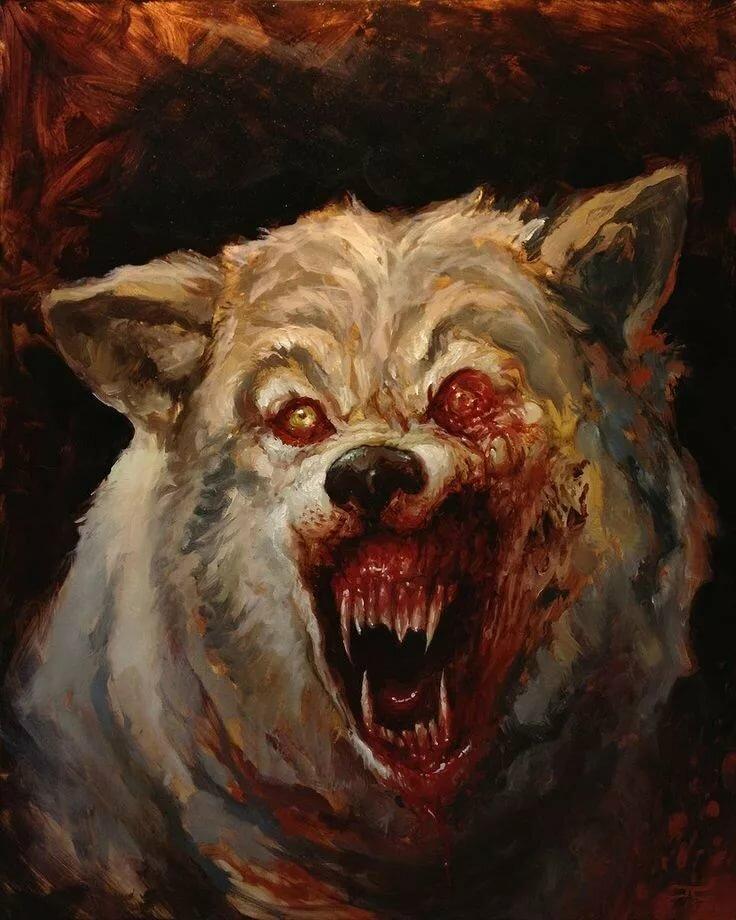 стены, картинки злые собаки и волки что новая