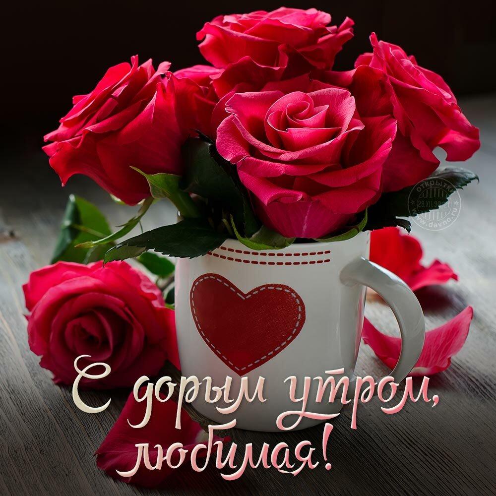 Открытки с добрым утром любимой девушке красивые пожелания