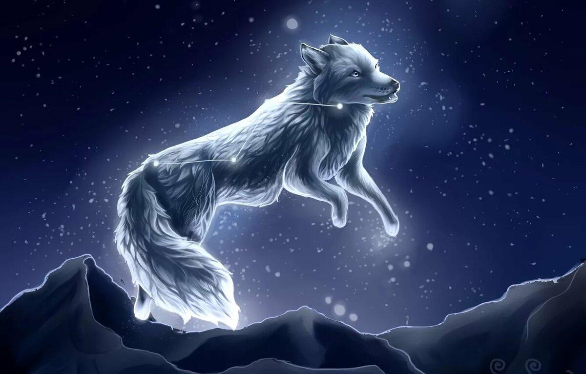 картинки волшебных волков на аву наверное