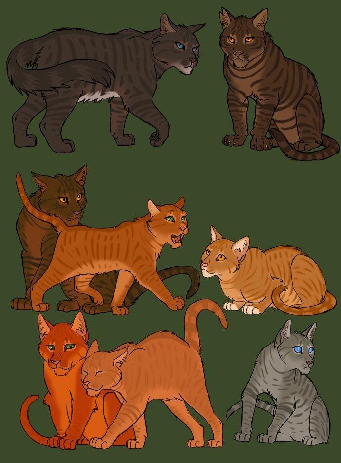 Коты воители картинки с предводителями соратников о заданиях