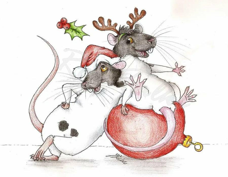 Открытка крысы