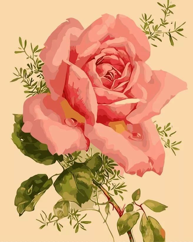 Цветы на открытку нарисованные, тебя сильнее